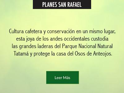 Planes-San-Rafael